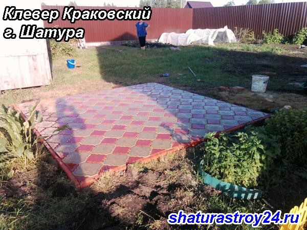 Клевер Краковский г. Шатура