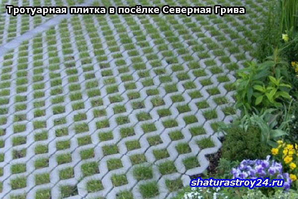Другие примеры укладки тротуарной плитки Эко в Шатурском районе