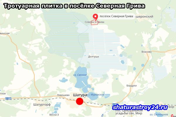 Тротуарная плитка в посёлке Северная Грива: Шатурский район Московской области