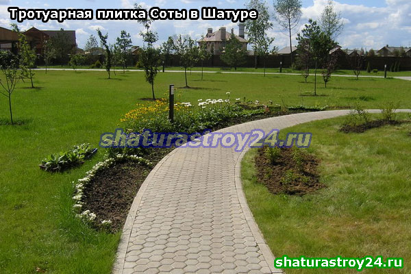 Пример укладки серой плитки Соты на тротуаре в городком парке