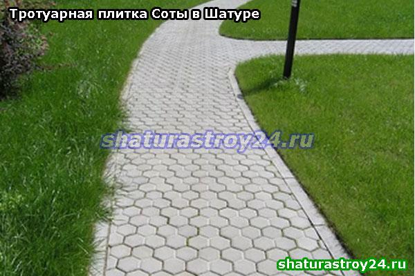Пример укладки серой плитки Соты на пешеходной дорожке на дачном участке в Шатурском районе