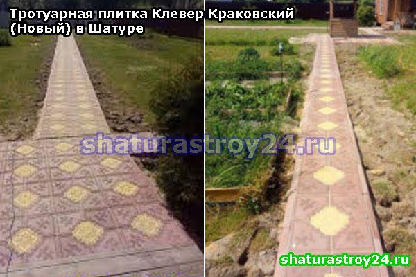Клевер Краковский (Новый) для мощения пешеходной дорожки на даче (Шатурский район, Московская область)