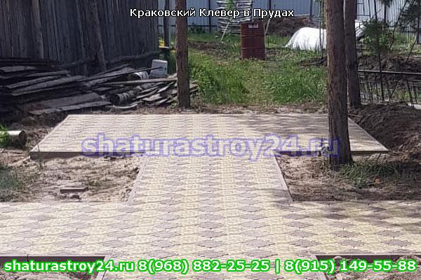 Краковский Клевер в Пруды Шатурский район